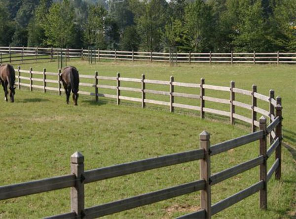Pferdezaun aus Hartholz, umzäunung - Hartholzzaun, Koppelzaun