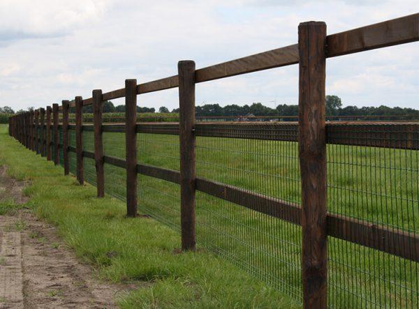 Pferdezaun mit Gitter - Drahtzaun, Koppelzaun mit Gitter