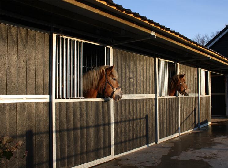 Pferdeboxen Selber Gebaut Forum Pferd De