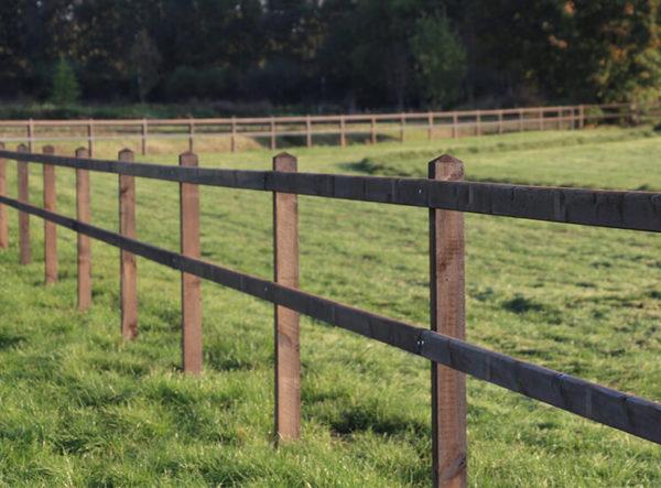 Pferdezaun, Weidezaun für Pferde, Koppelzaun