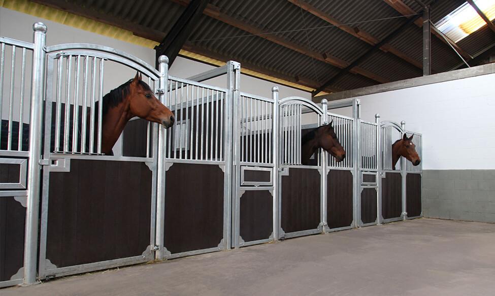 Pferdeboxen mit Auslaufmöglichkeiten
